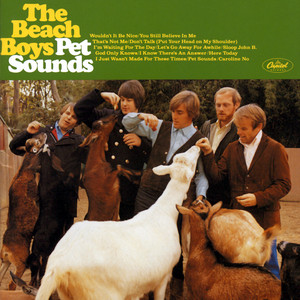 The Beach Boys – That's Not Me (Studio Acapella)
