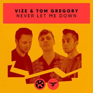 VIZE, Tom Gregory - Never Let Me Down