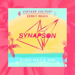 Djon maya maï  - Vintage Culture and Zerky Remix cover art