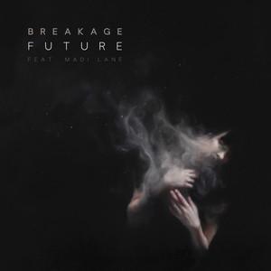 Future - Calibre Remix