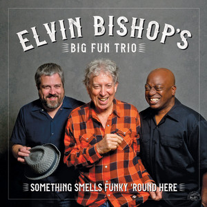 I Can't Stand The Rain by Elvin Bishop