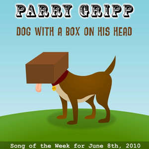 Dog With a Box on His Head