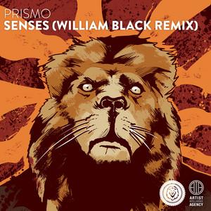 Senses - Single (William Black Remix)