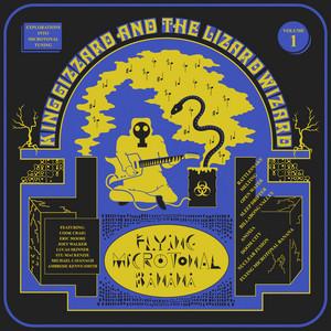Rattlesnake by King Gizzard & The Lizard Wizard