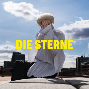 Du musst gar nix by Die Sterne, The Düsseldorf Düsterboys