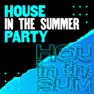 House in the summer party