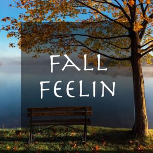 Fall Feelin