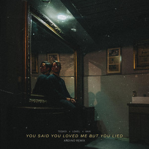 You Said You Loved Me But You Lied (Remix)