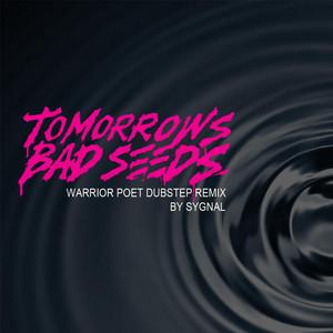 Warrior Poet DubStep (Remix)
