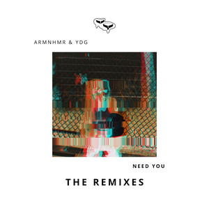 Need You - The Remixes