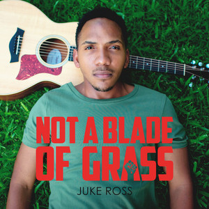 Not a Blade of Grass
