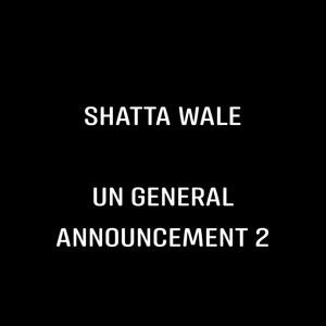 UN General Announcement 2