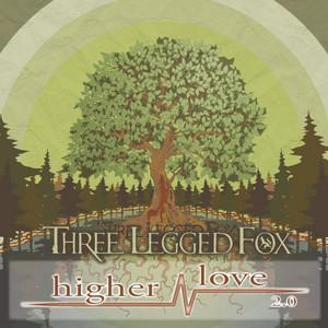 Higher Love 2.0 (Alternate Mix)