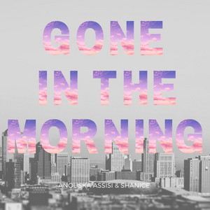 Gone in the Morning