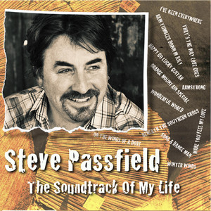 Happy Go Lucky Guitar by Steve Passfield