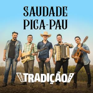 Saudade Pica-Pau