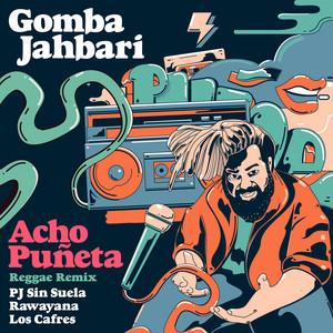 Acho Puñeta (feat. Los Cafres) (Reggae Remix)