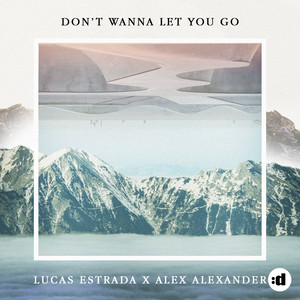 Don't Wanna Let You Go