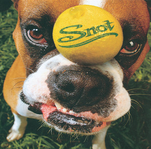 Snot cover art