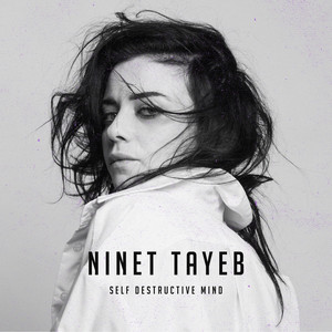 Self Destructive Mind by Ninet Tayeb