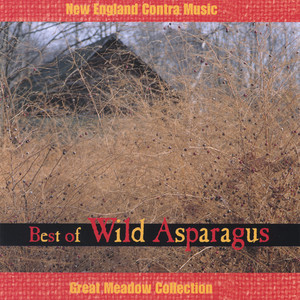 Contney's Yard, Heave Together, My Needs by Wild Asparagus