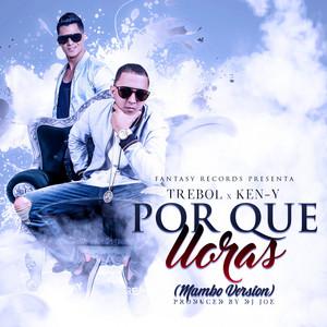 Por Que Lloras (Mambo Version) [feat. Ken-Y]