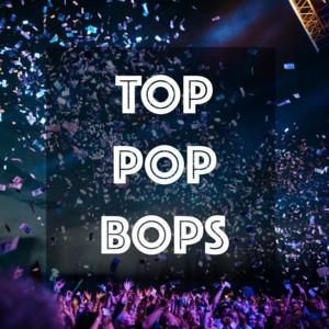 Top Pop Bops