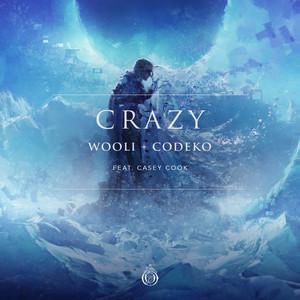 Crazy (feat. Casey Cook)