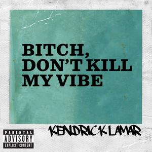 Bitch, Don't Kill My Vibe