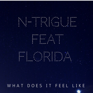 What Does It Feel Like (feat. Flo Rida)