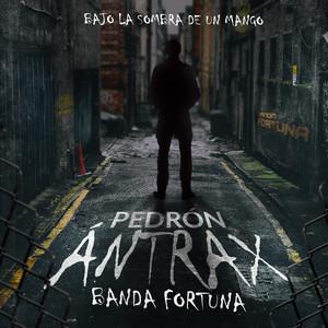 """Pedrón Ántrax """"Bajo La Sombra De Un Mango"""" (En Vivo)"""