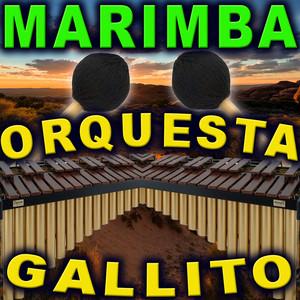 La Cumbia by Marimba Orquesta Gallito