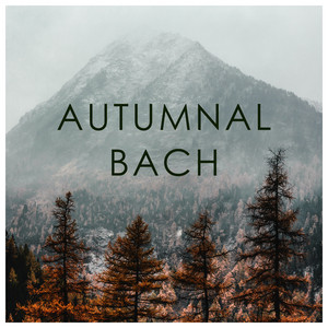 Prelude And Fugue In F (Well-Tempered Clavier, Book I, No.11), BWV 856 by Johann Sebastian Bach, Walter Gieseking