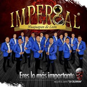 Danzando Con el Mundo by Banda Imperial de Huajuapan