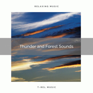 Thunder and Forest Sounds by Concentration Rain Sounds
