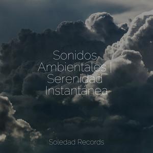 Sonidos Ambientales | Serenidad Instantánea