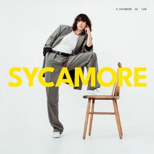 Drew Sycamore - Jungle