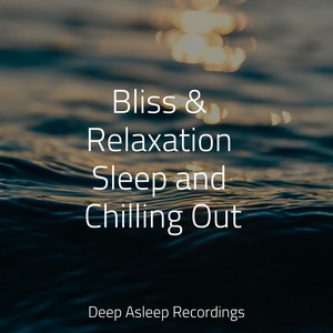 Bliss & Relaxation Sleep and Chilling Out