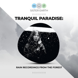 ! ! ! ! ! ! ! Tranquil Paradise: Rain Recordings from the Forest ! ! ! ! ! ! !