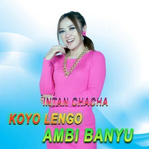 Koyo Lengo Ambi Banyu