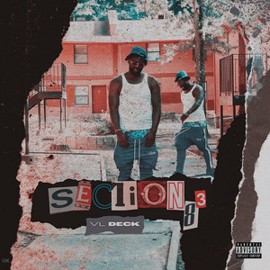 Section8 3