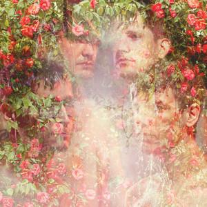Golden Light cover art