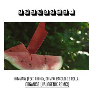Organise - Halogenix Remix cover art