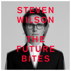 Steven Wilson – Personal Shopper (Studio Acapella)