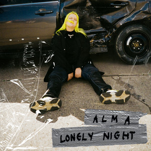 Lonely Night cover art