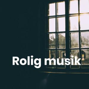 Rolig musik - Hyggelig musik