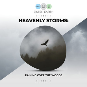 ! ! ! ! ! ! ! Heavenly Storms: Raining Over the Woods ! ! ! ! ! ! !