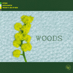 Woods by Justin Martin, Sea Of Bees