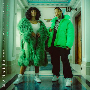 What You Did (feat. Ella Mai) [Toddla T Remix]