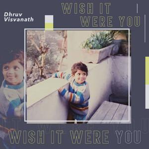 Wish It Were You
